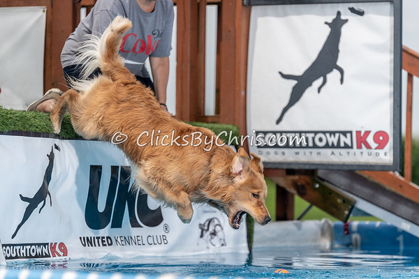 NIKA Dock Diving - Northern Illinois K9 Association - Southtown K9 - Saturday, July 28, 2018