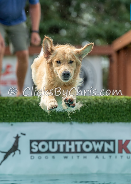 Distance - NADD / AKC Dock Diving at Southtown K9 on Saturday, Aug. 1, 2020