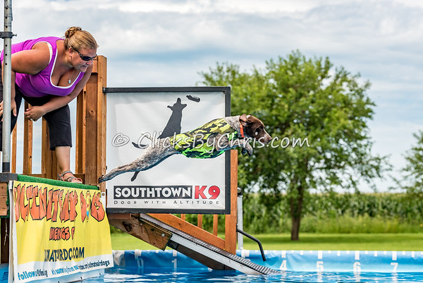 UAD / UKC Dock Diving Competition - Southtown K9 - Sunday, Aug. 7, 2016