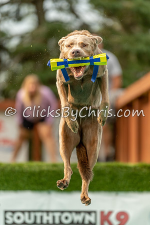 Air Retrieve - NADD / AKC Dock Diving at Southtown K9 on Saturday, Aug. 15, 2020