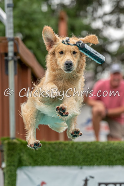 Distance - NADD / AKC Dock Diving at Southtown K9 on Saturday, Aug. 15, 2020