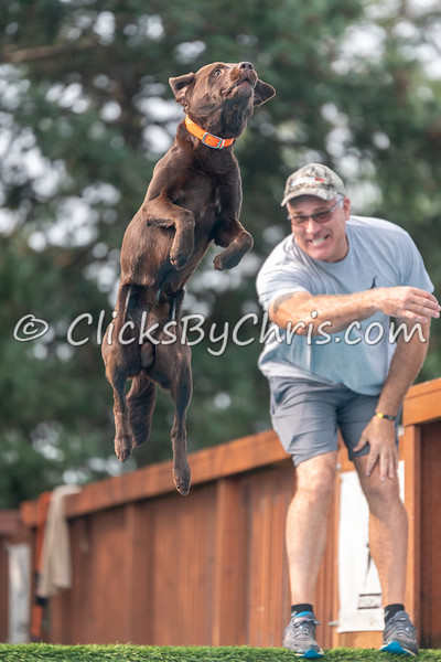 NIKA Dock Diving - Northern Illinois K9 Association - Southtown K9 - Saturday, Aug. 18, 2018