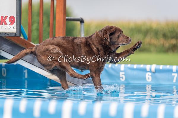 NIKA Dock Diving - Northern Illinois K9 Association - Southtown K9 - Sunday, Aug. 19, 2018