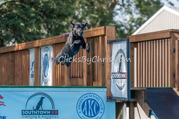 NADD / AKC Trial - Saturday, Aug. 22, 2015 - Frame: 2702