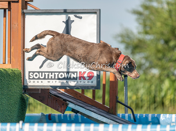 NIKA UKC Dock Jumping Held at Southtown K9 on Saturday, Aug. 24, 2019