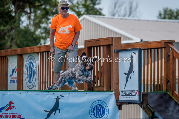 NADD / AKC National Qualifier Dock Diving Trial - Southtown K9 - Saturday, Aug. 26, 2017