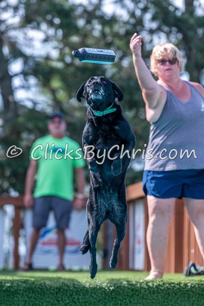 Southtown K9 Fun Jump: Splash-04 08/29/2021