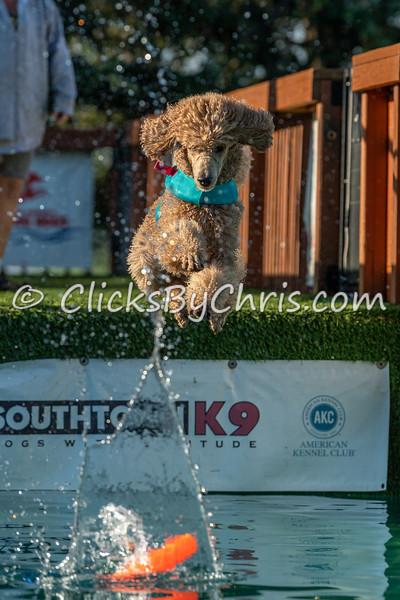 Southtown K9 NADD Season Shutdown: Splash-10 09/06/2021