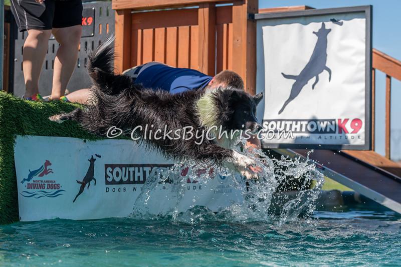 Southtown K9 NADD Season Shutdown: Splash-11 09/06/2021