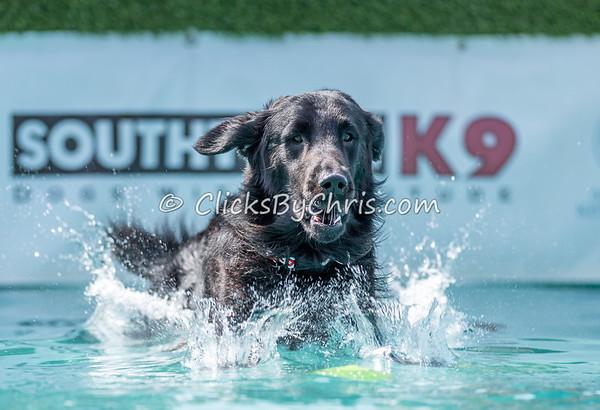 Splash-13  - NADD / AKC Dog Dock Diving at Southtown K9