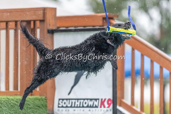 Air-Retrieve  - NADD / AKC Dog Dock Diving at Southtown K9