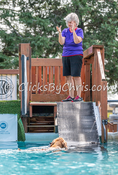 Splash-10  - NADD / AKC Dog Dock Diving at Southtown K9