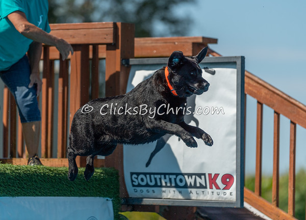 NADD / AKC Dock Diving Trial - Southtown K9 - Saturday, Sept. 7, 2019