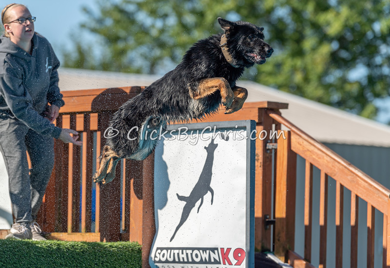 NIKA UKC Dock Jumping Held at Southtown K9 on Saturday, Sept. 14, 2019