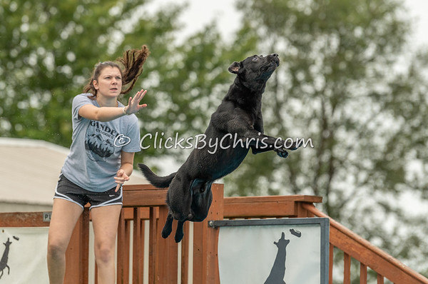 NIKA UKC Dock Jumping Held at Southtown K9 on Sunday, Sept. 15, 2019