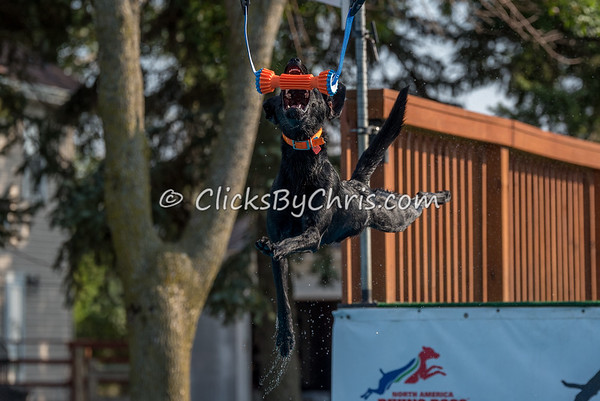 NADD / AKC Dock Diving Trial - Southtown K9 - Saturday, Sept. 23, 2017