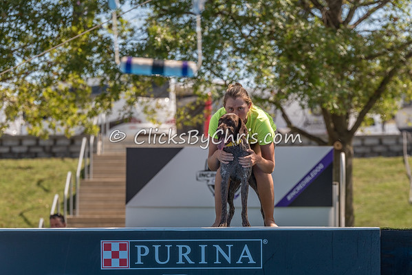 PPPIDC - Purina Pro Plan Incredible Dog Challenge 2017 - Purina Farms - Friday, Sept. 29, 2017
