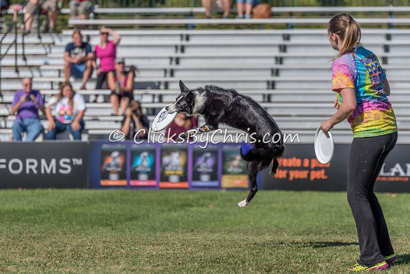 PPPIDC - Purina Pro Plan Incredible Dog Challenge 2017 - Purina Farms - Friday, Sept. 29, 2017