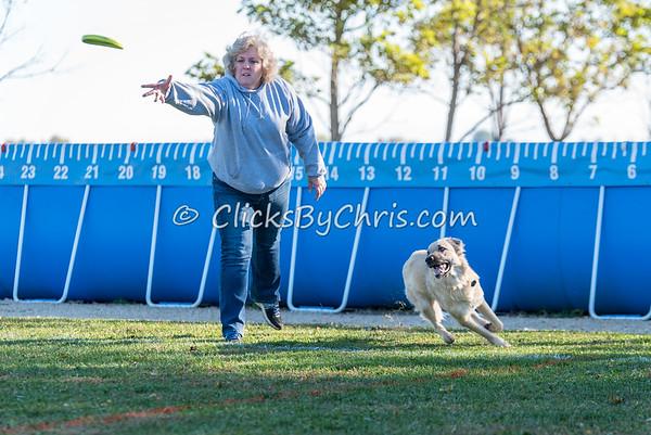 UpDog Challenge - Saturday, Oct. 17, 2015 - Frame: 3005