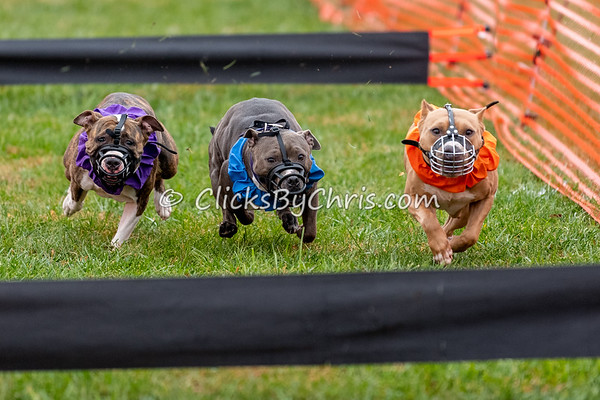 UKC Gateway - Drag Racing - Purina Farms - Friday, Oct. 26, 2018