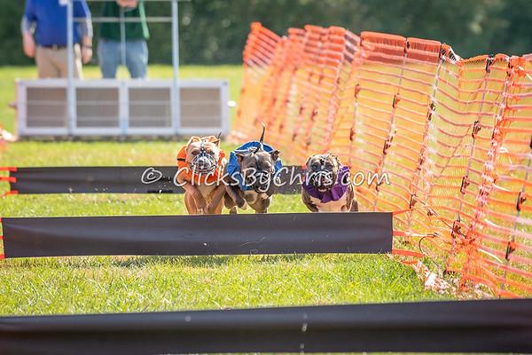 UKC Gateway - Drag Racing - Purina Farms - Saturday, Oct. 27, 2018
