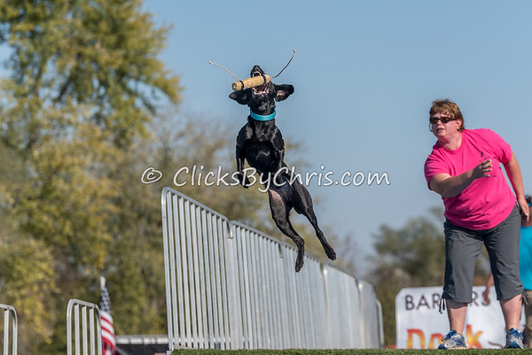 2016 Ultimate Air Games - Purina Farms - Sunday, Oct. 30, 2016