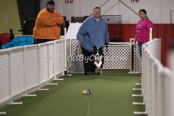 NIKA Fun Race - Northern Illinois K9 Association - Granny Rose K-9 Enrichment Center - Saturday, Nov. 18, 2017