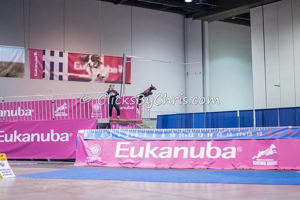 2015 NADD/AKC Eukanuba National Championship - Saturday, Dec. 12, 2015 - Frame: 2801