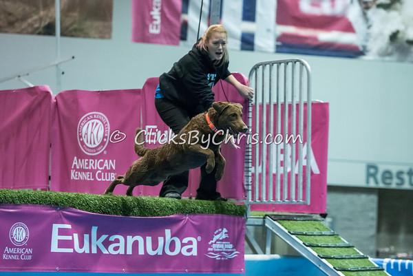 2015 NADD/AKC Eukanuba National Championship - Saturday, Dec. 12, 2015 - Frame: 5711