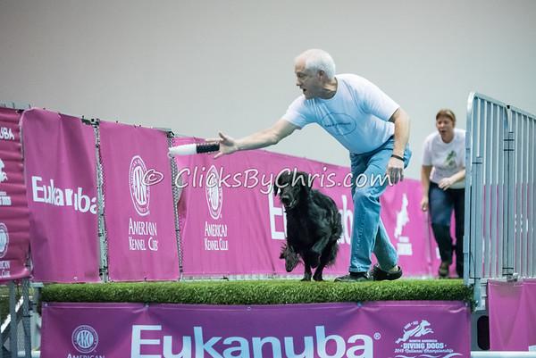 2015 NADD/AKC Eukanuba National Championship - Sunday, Dec. 13, 2015 - Frame: 8397