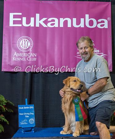 2015 NADD/AKC Eukanuba National Championship - Thursday, Dec. 10, 2015 - Frame: 1438