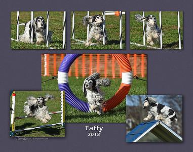 Lohsen 11x14 Taffy montage