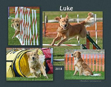 Berman 11x Luke montage