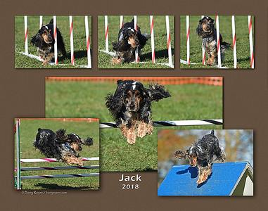 Lohsen 11x14 Jack montage