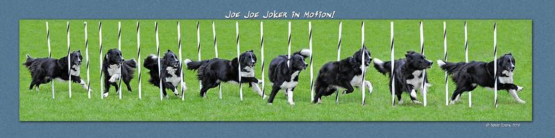 Garfinkel Joe Joe Joker weave montage 3