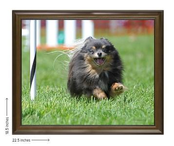 Photo in Beaded Walnut Frame