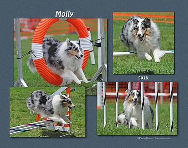 LaPier 11x Molly montage