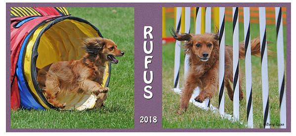 Hughey 15 oz Rufus  mug