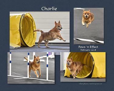 Conroy 8x Charlie PNE18 montage