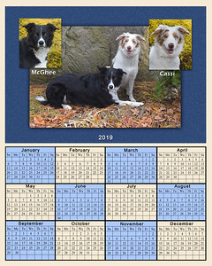 2019 Donoghue calendar