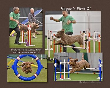 Moore 8x Hogan montage