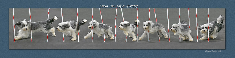 Wisner Rugby weave montage final