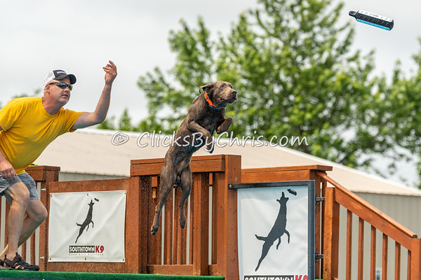 NIKA Dock Diving - Northern Illinois K9 Association - Southtown K9 - Saturday, June 9, 2018