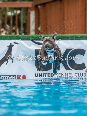 NIKA Dock Diving - Northern Illinois K9 Association - Southtown K9 - Sunday, June 10, 2018