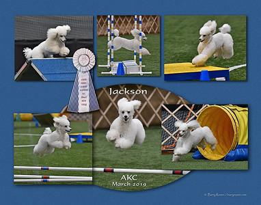 Romano 11x14 montage