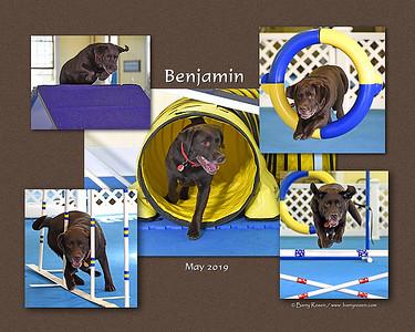Fagan 8x10 Benjamin montage