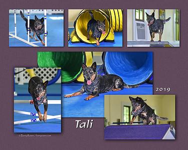 Slattery 16x20 Tali montage