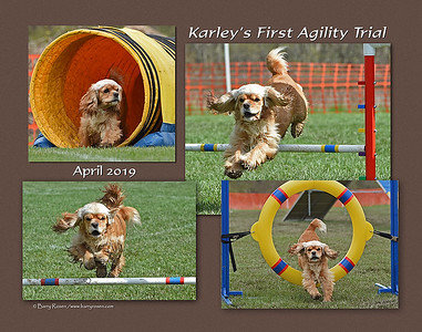 Cacchio Karley montage