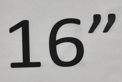 NER_1313