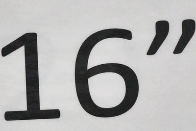 NER_3407